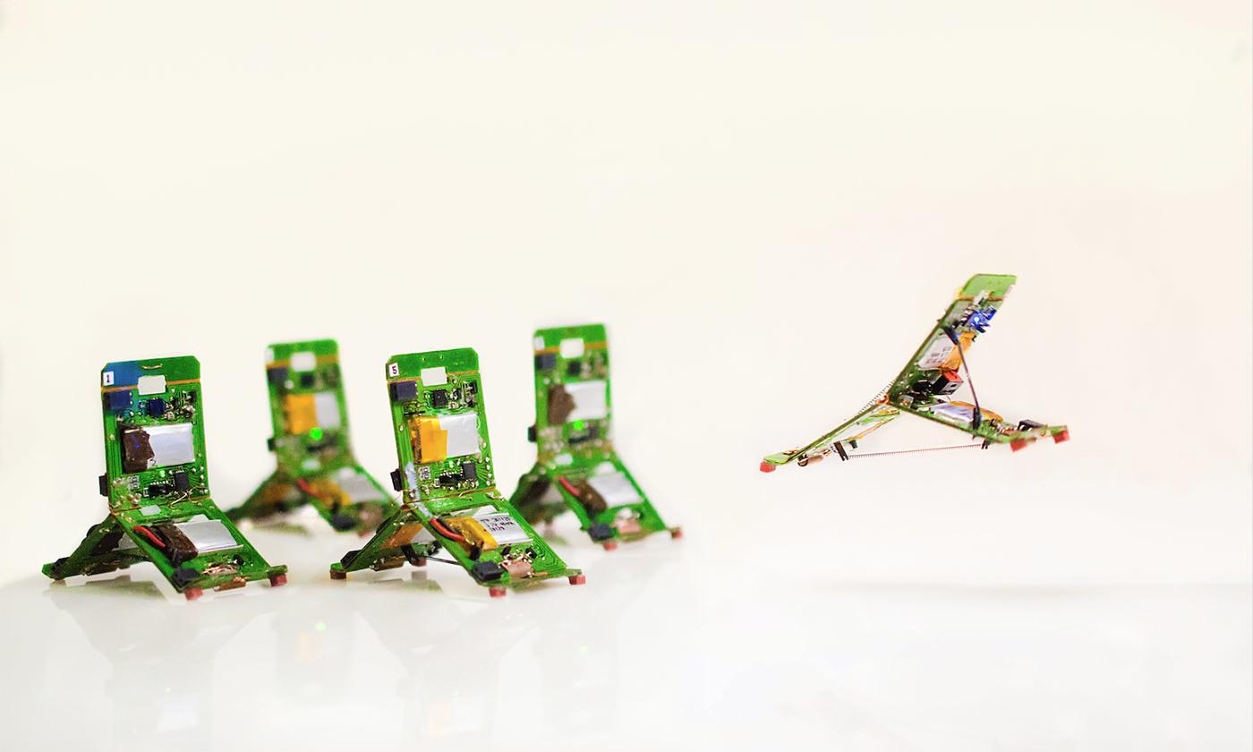 [Перевод] Робогами – реальные потомки терминаторов и трансформеров