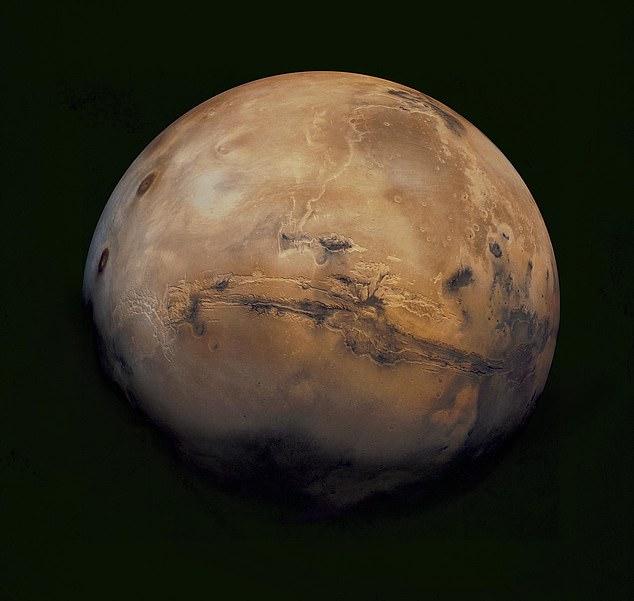 Илон Маск Марс  свободная планета, там не действуют законы Земли
