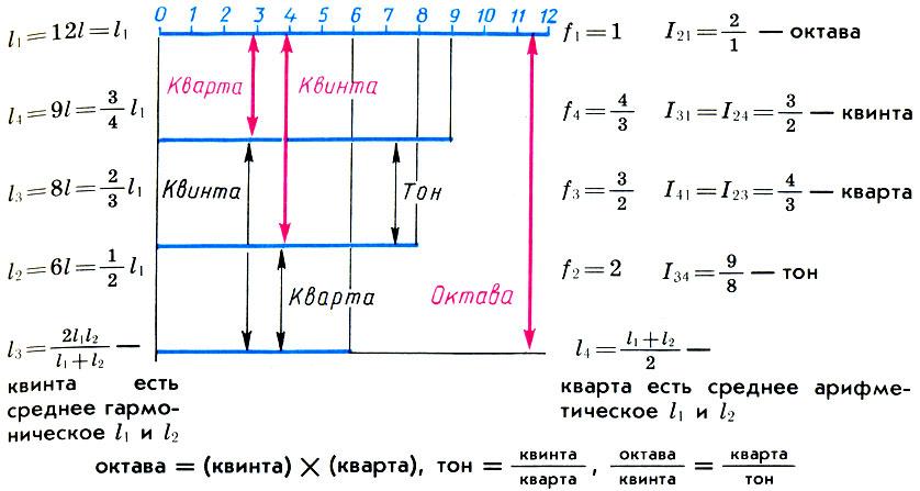 Деление струны монохорда (l1) на части, образующие с ней совершенные консонансы: октаву (l2), квинту (l3) и кварту (l4) и соотношения между ними. Интервалы, которые целая струна монохорда образует со своими частями, показаны красными стрелками