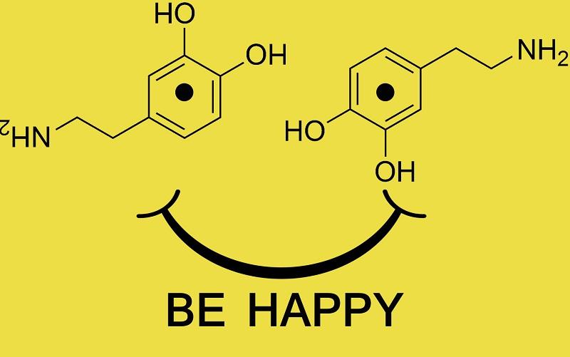 Химическая формула дофамина.  Последние исследования показывают, что дофамин не вызывает чувства удовольствия или удовлетворения. Он  лишь создаёт сильное ощущение предвкушения от получения результата или нежелания его получения. Подобное событие  испытывают люди перед наркотическим воздействием, оргазмом или при сильном отвращении [https://www.worldcat.org/title/molecular-neuropharmacology-a-foundation-for-clinical-neuroscience/oclc/273018757]; [https://www.jneurosci.org/content/33/41/16383]