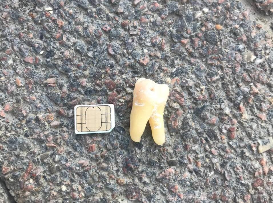 Как правильно собрать зубы в пакетик реплантация выбитых зубов