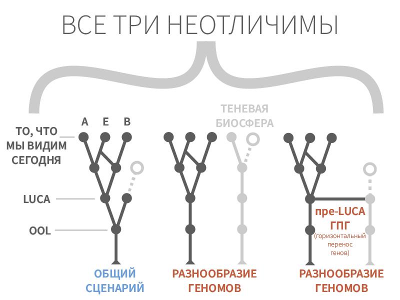 """Рисунок 3. Невозможность различия сценариев происхождения жизни при подходе """"сверху-вниз""""."""
