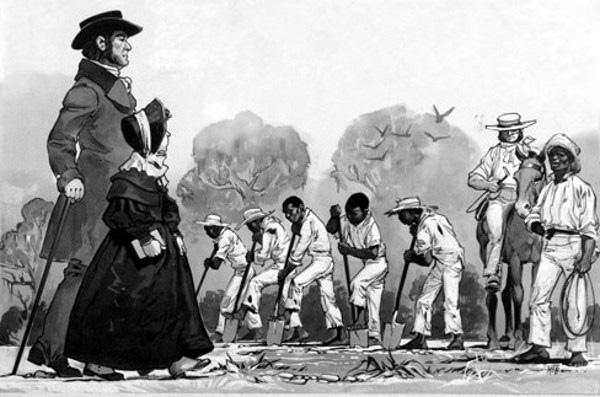 Black Olives Matter раса, криминал и огонь на поражение в США. Часть 1