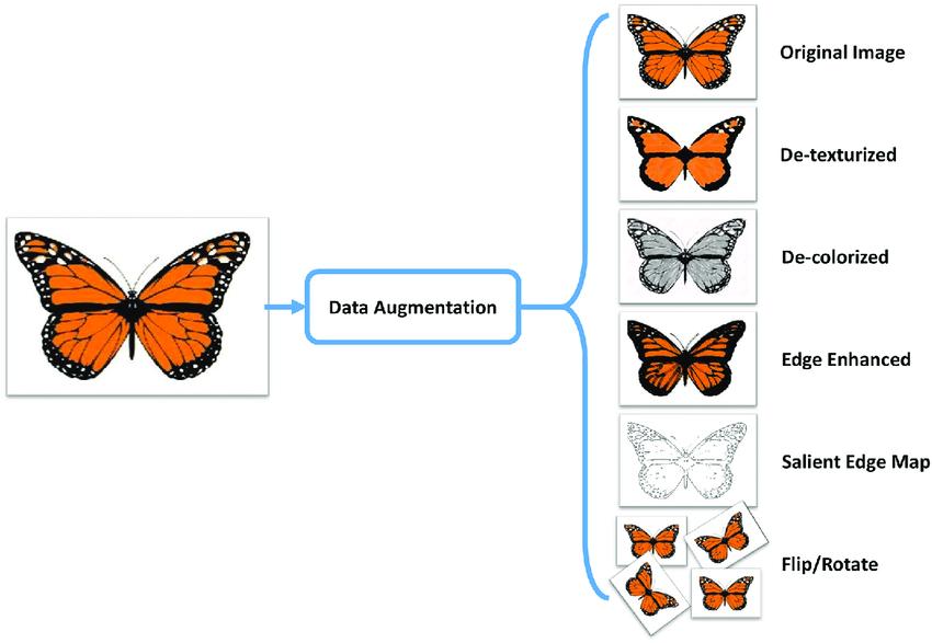 Пример аугментации изображений.