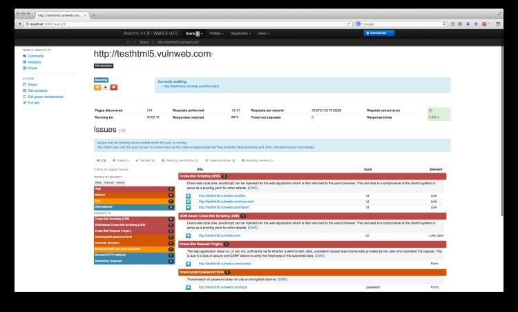 Скриншот из веб-интерфейса Arachni