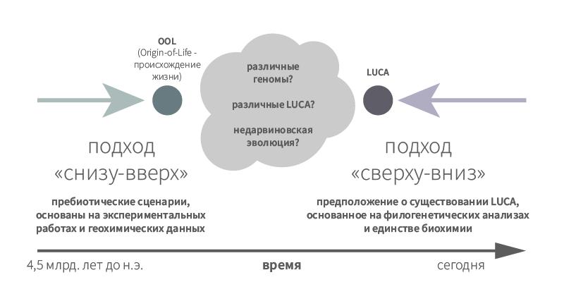 Рисунок 2. Горизонт событий в исследованиях происхождения жизни.