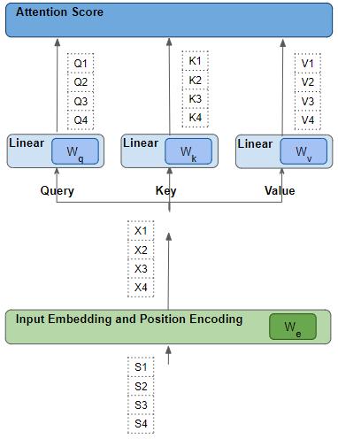 Линейные веса и веса векторного представления обучены