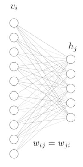 Топология нейронной сети RBM