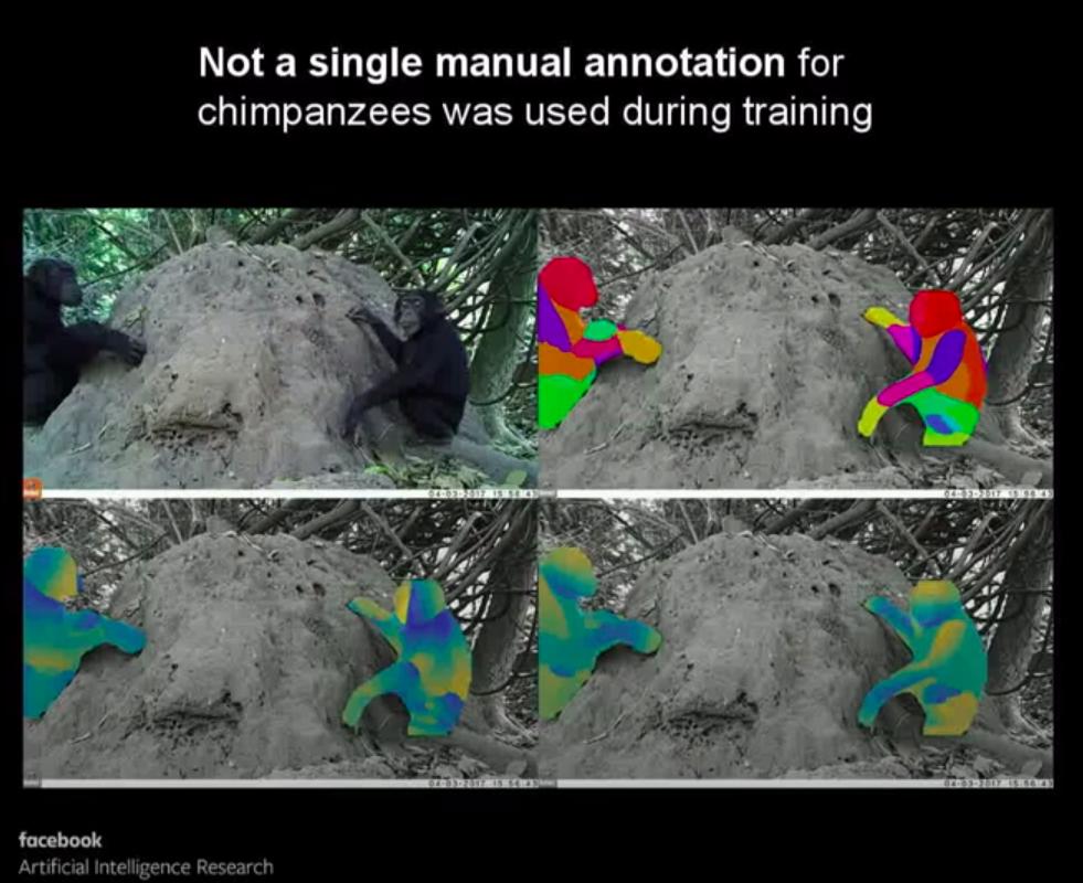 Обучаем качественные модели без DensePose разметки