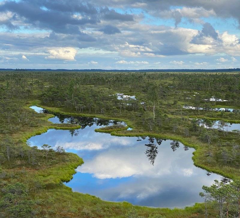 В Латвии больше всего кайфую от природы