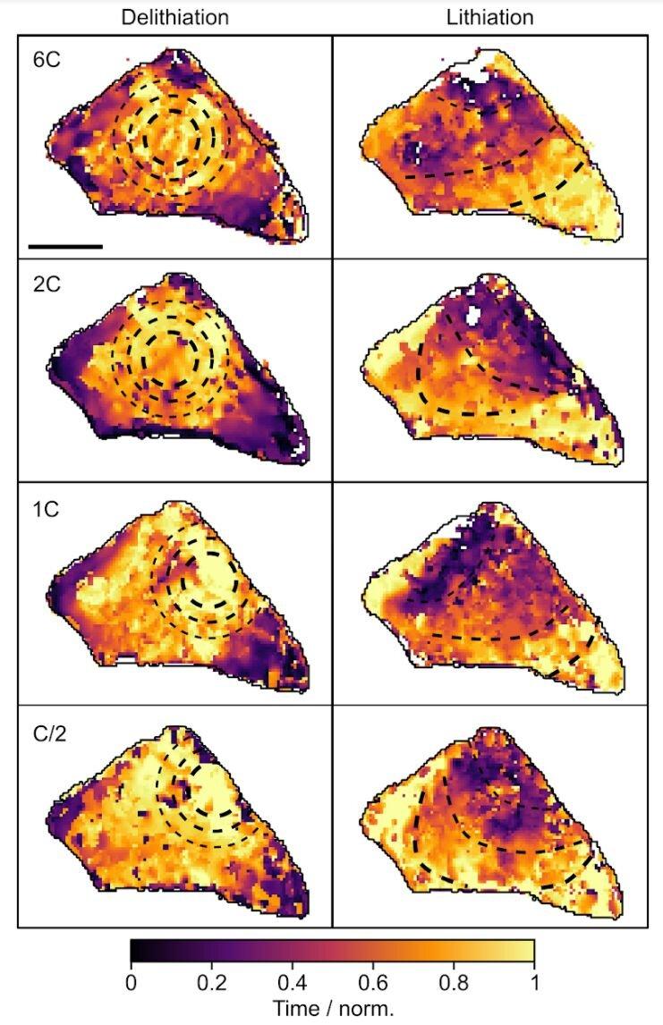 Продвижение границы раздела фазы через активную частицу во время фазового перехода при делитации и литации. Цветовая шкала показывает время, за которое каждый пиксель проходил границу фазы. Сплошные чёрные линии отражают контур границы фазы, пунктиром указана её прогрессия. Шкала 2 мкм. Источник: Nature (2021). DOI: 10.1038/s41586-021-03584-2