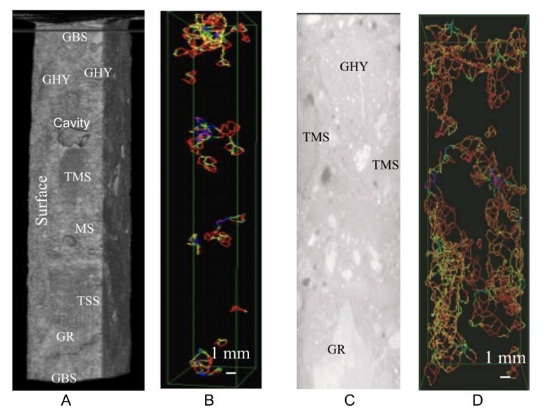 Снимки компьютерной томографии, демонстрирующие трещины в бетоне; GBS, GHY, TMS, MS TSS и GR обозначают различные типы заполнителей в бетонном растворе