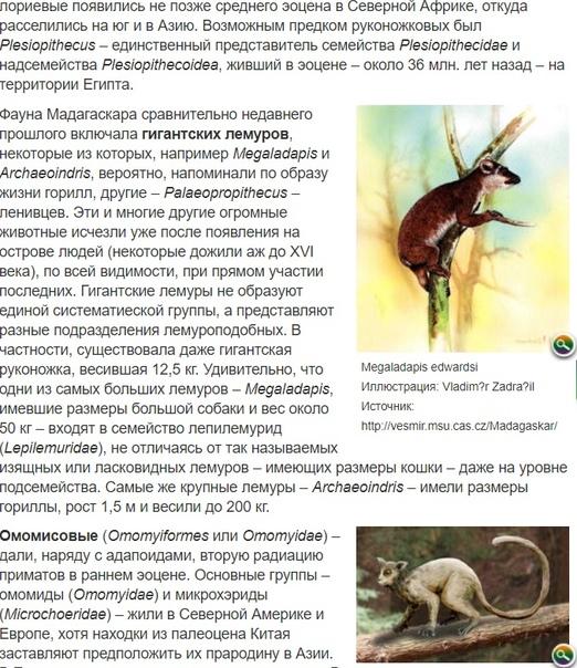 Источник: antropogenez.ru