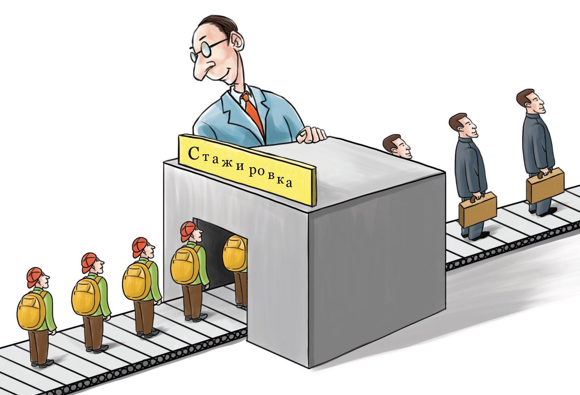 Не человек для работы, а работа для человека мои ошибки при организации стажировок для студентов
