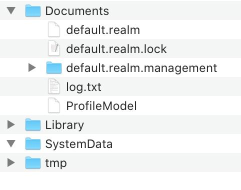 По умолчанию Realm складывает всё в папку Documents
