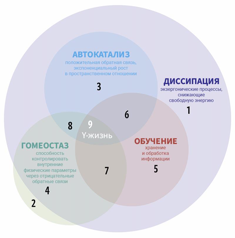 Рисунок 5. Диаграмма Венна для 4 принципов. Y-псевдожизнь отмечена зонами с 1 по 8.