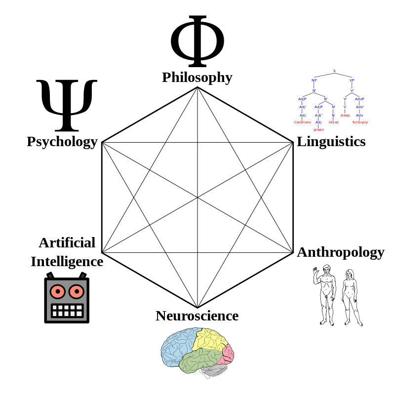 Вот такую картинку из Википедии многие, наверно, видели (Wikimedia Commons)