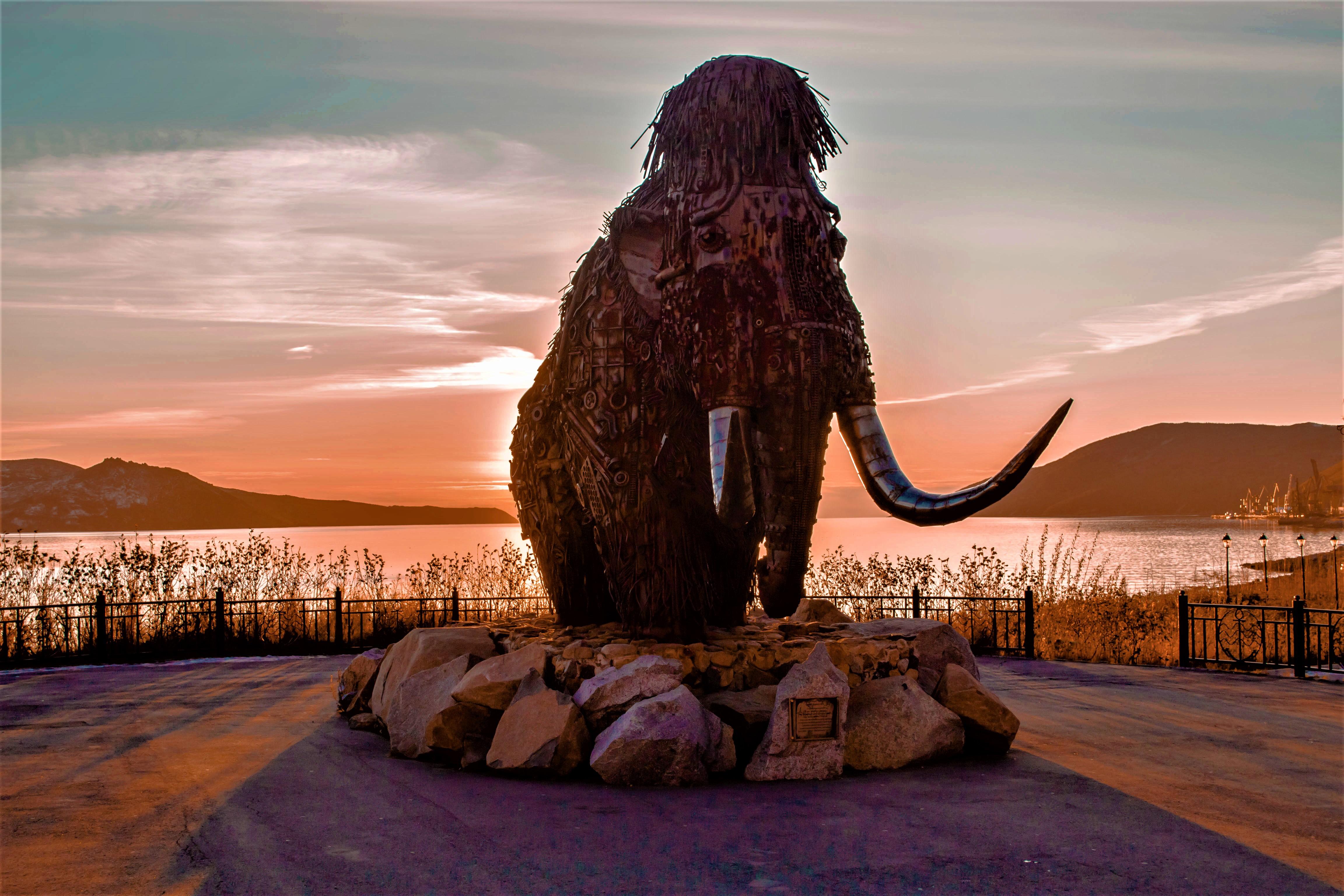 Памятник всем мамонтам обнаруженным в Магаданской земле. Данный памятник находится в городе Магадан.