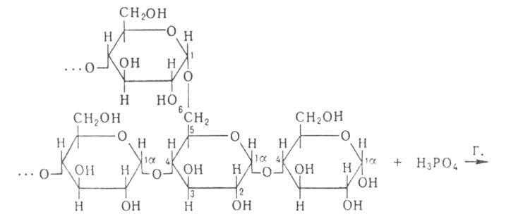 Формула гликозилтрансферазы