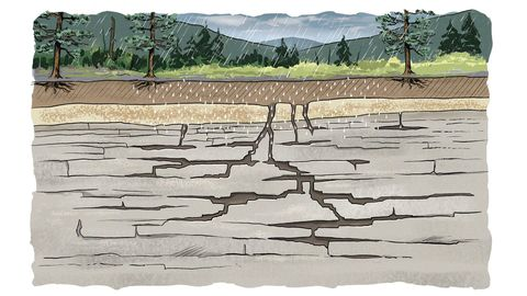 На острове воронки образуются в основном в результате процесса, называемого диссолюцией: вода проникает и разрушает растворимые минералы в породе под поверхностью, создавая серию подземных трещин, путей и камер, похожих на швейцарский сыр.