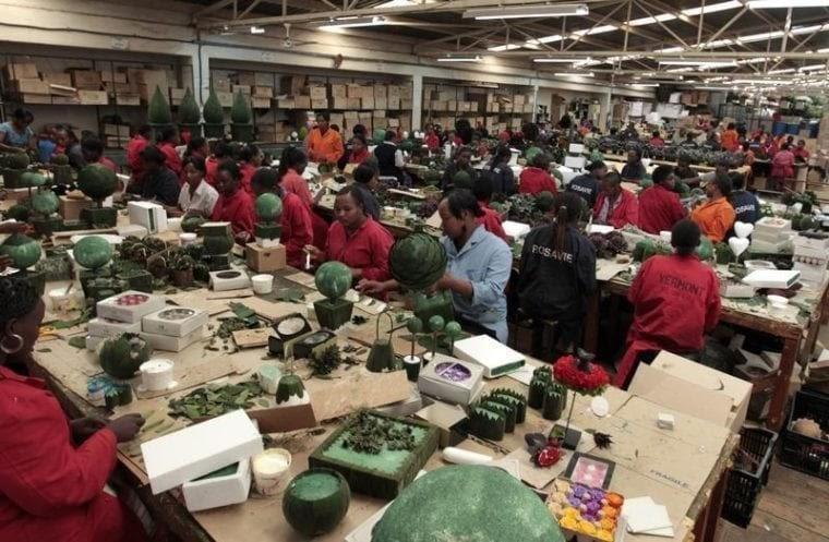 Кенийские рабочие на фабрике по изготовлению стабилизированных растений Vermont Flowers EPZ, Найроби, 2011 год. REUTERS/Thomas Mukoya