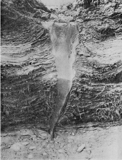 Пример ледяной жилы. Обнаружена в высокой пойме в среднем течении р. Амгуэмы