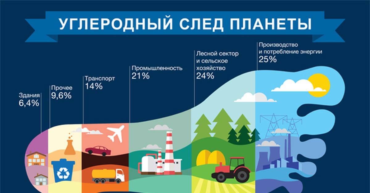 Лесной сектор и сельское хозяйство сумели обогнать даже промышленность.