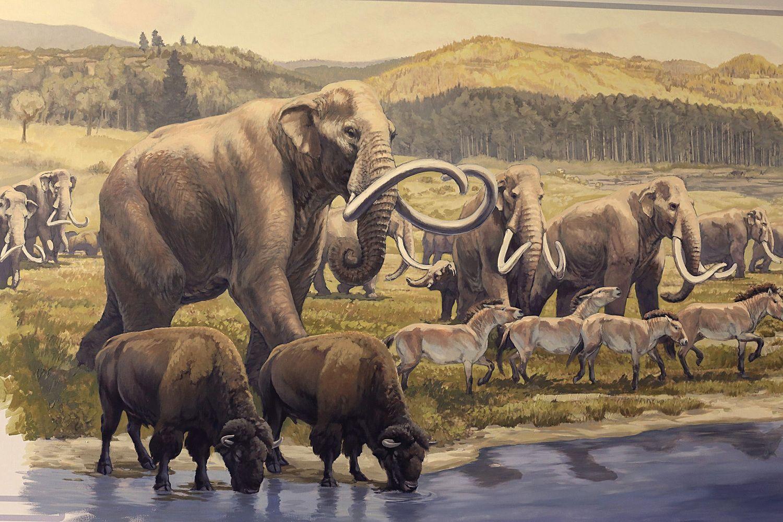 Степные мамонты, бизоны и горбоносные лошадки бредут к водопою, чтобы утолить жажду.