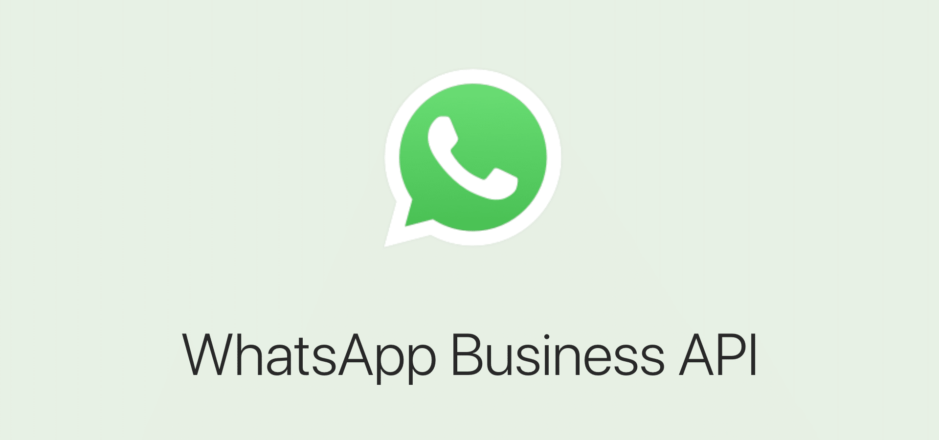 WhatsApp BusinessAPI