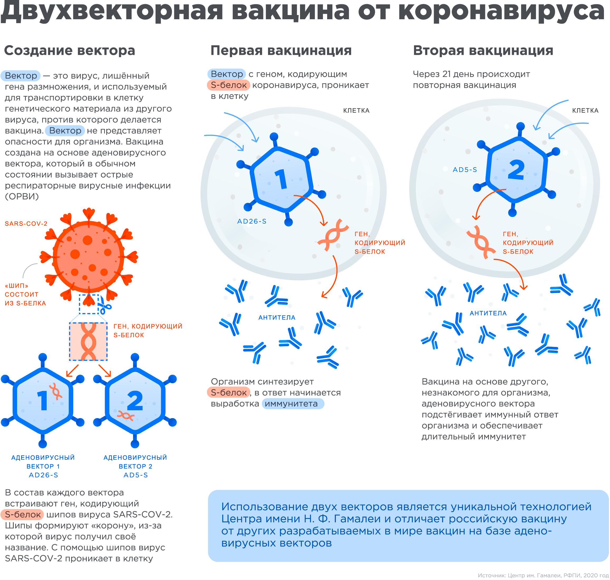 Источник: https://www.gamaleya.org/research/vaktsina-protiv-covid-19/