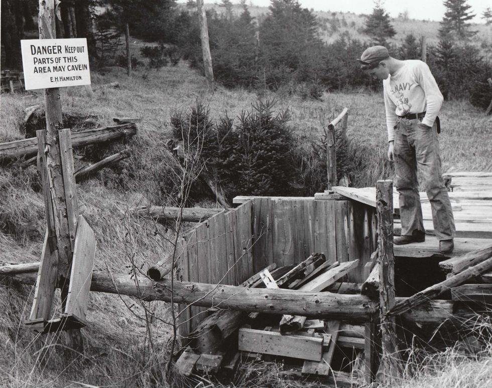 Остров Оук. К моменту съёмки в 1947 году охота унесла две жизни. Архивы Новой Шотландии.