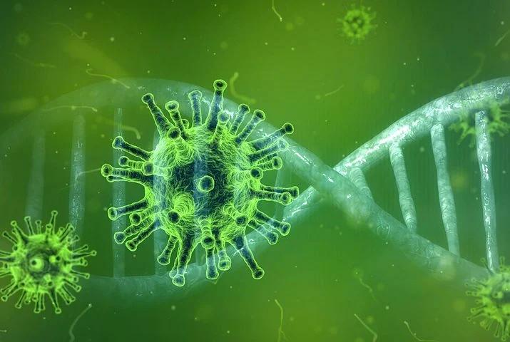 Чихайте на Covid на здоровье! Новые исследования показали, что обычная простуда может останавливать SARS-CoV-2