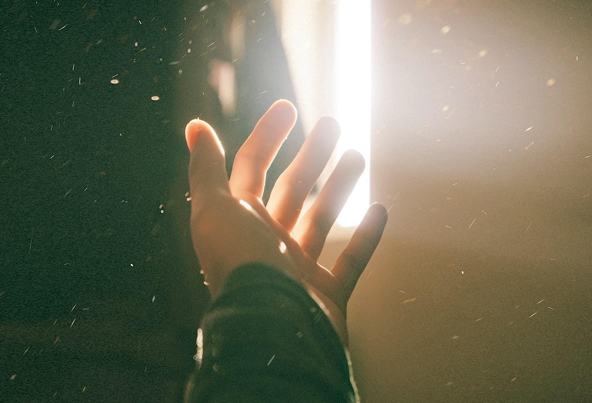Фотография: Dyu - Ha. Источник: Unsplash.com
