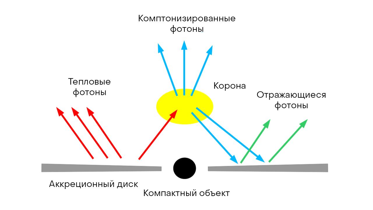 Рис.8: Компактный объект с аккрецирующим геометрически тонким и оптически толстым диском. Иллюстрация взята из [89].