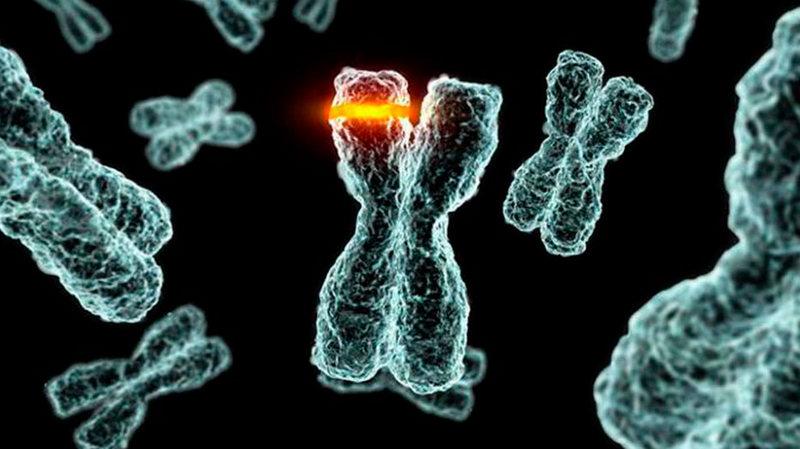 Мутация в ДНК