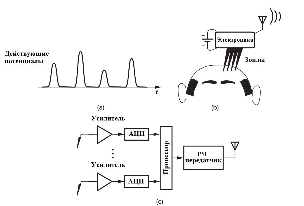 Рис. 1.2: (а) форма волны напряжения, генерируемая в результате нейронной активности, (b) использование датчиков для измерения действующих потенциалов, и (c) обработка и передача сигналов.