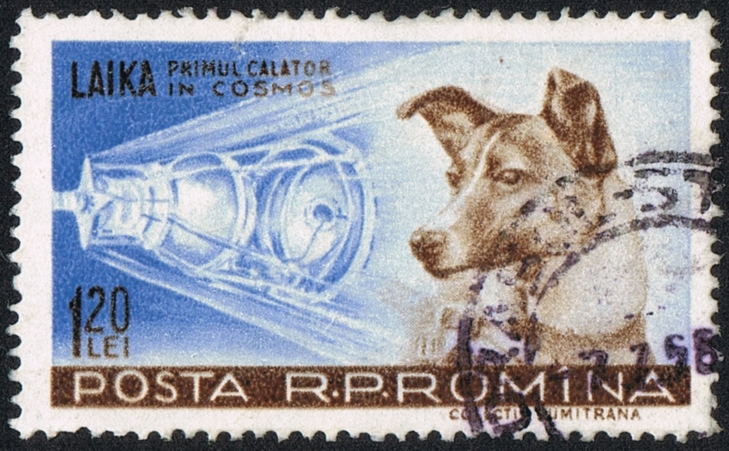 Почтовая марка с Лайкой