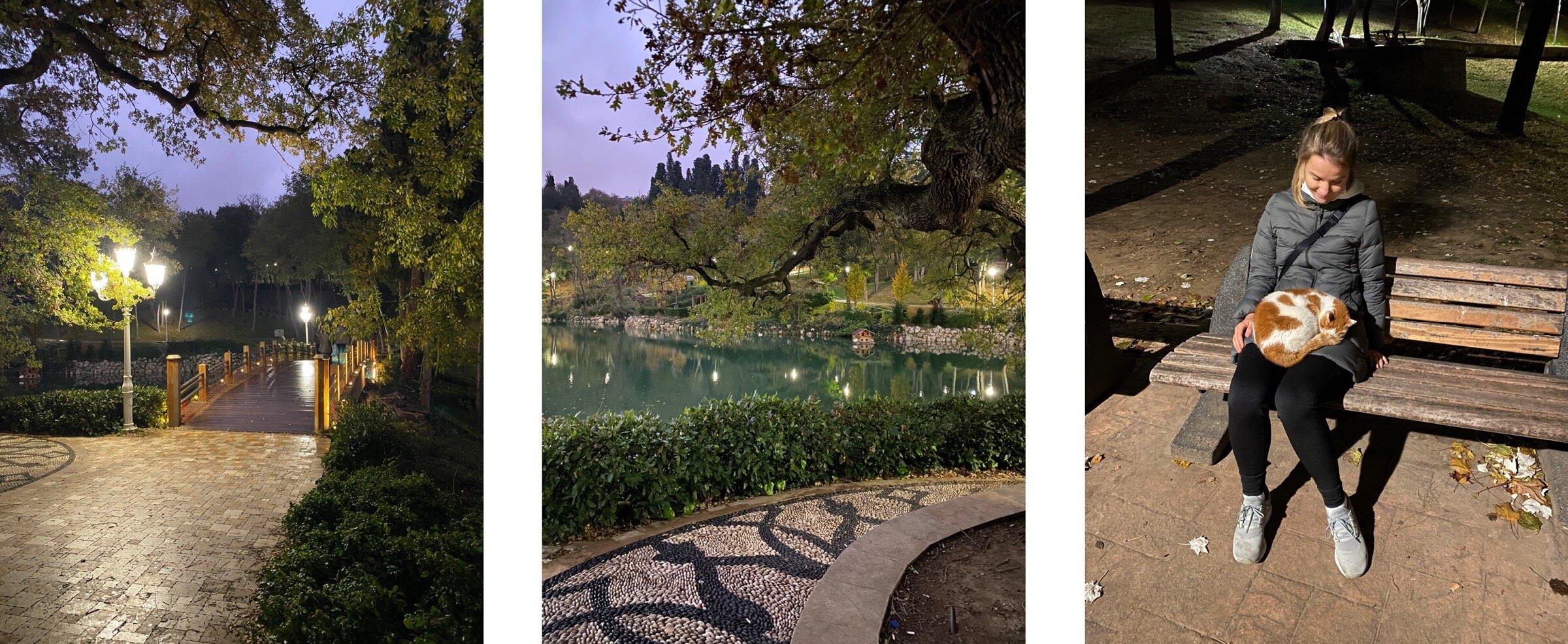 В Yıldız Park есть пруд и красивый 300-летний дуб, а в Maçka мы были так часто, что местный кот стал нас узнавать и приходить спать на коленках