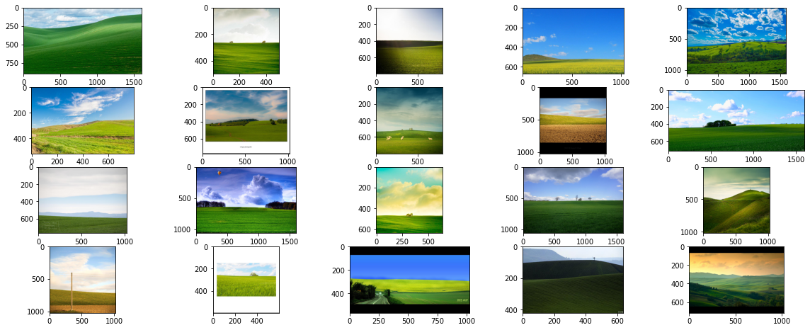 """""""a picture of a windows xp wallpaper"""""""