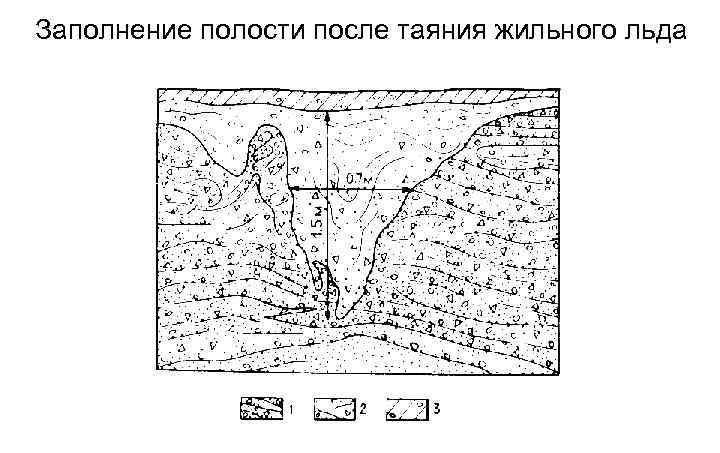 1) Песок с галькой и щебнем 2) песок с галькой и щебнем, выполняющим пространство бывшего ледяного клина, 3) суглинки с галькой