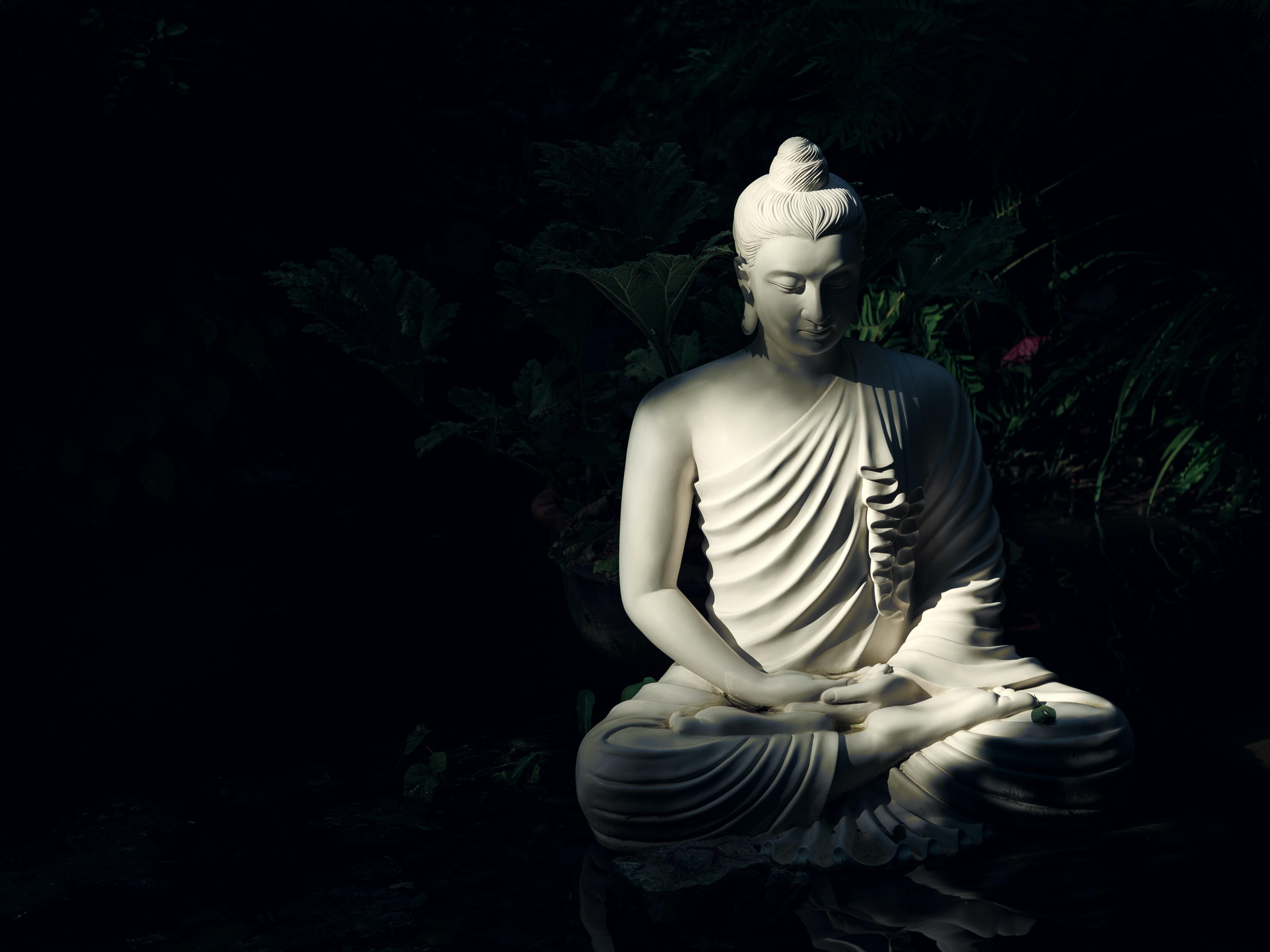 Буддизм с точки зрения программиста