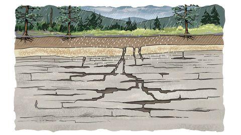 На острове Оук карстовые воронки образуются в основном из-за растворения: вода проникает в породы под поверхностью и размывает растворимые минералы, в результате чего образуется ряд подземных трещин, ходов и камер, напоминающих швейцарский сыр.