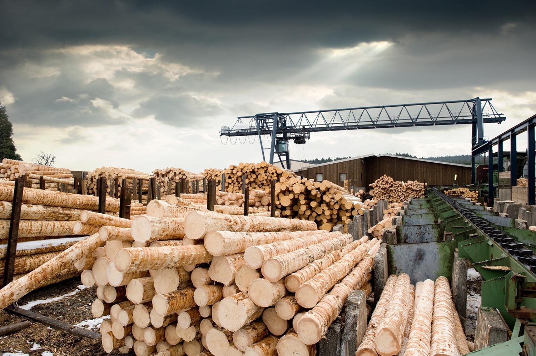 Если удалить из древесины лигнин, она может стать прозрачной