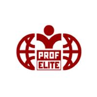 Логотип компании «ПРОФЭЛИТ»