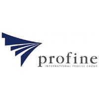 Логотип компании «профайн РУС»