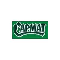 Логотип компании «Сармат»