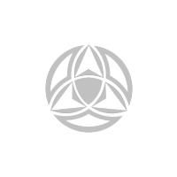 Логотип компании «ИП Скулачев А.Ю.»