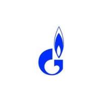 Логотип компании «Саратовская газовая компания»
