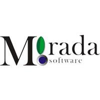 Логотип компании «Mirada Software»