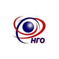 Логотип компании «НефтеГазОптимизация»